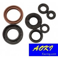 ENGINE SEAL KIT CR250 02/04