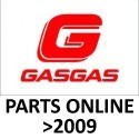 ONLINE GAS GAS PART DIAGRAMS (YEARS+ 2009)